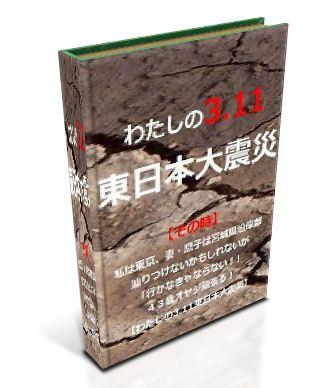 わたしの3.11 東日本大震災.JPG